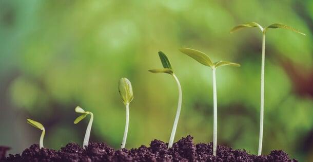 """Il """"momentum"""": quando bisogna pensare ad un'organizzazione efficiente"""